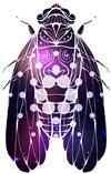 psyada_logo